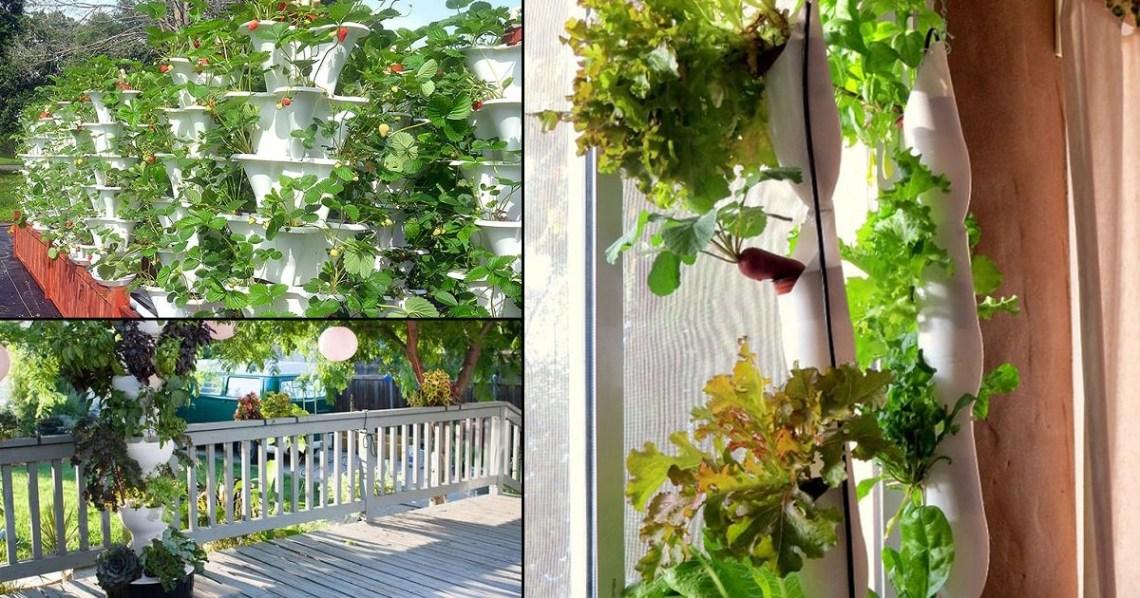 14 Diy Hydroponic Vertical Garden Ideas To Grow Food