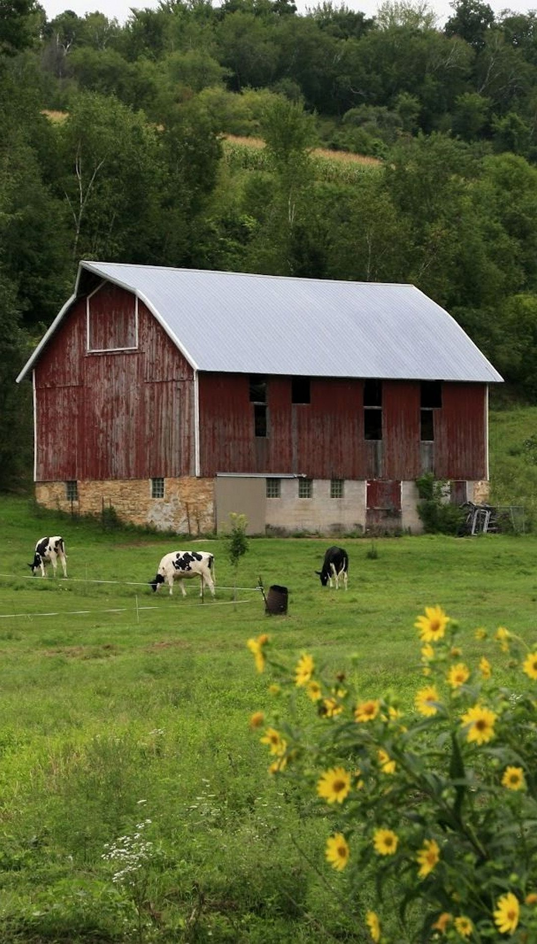 141 Amazing Old Bams And Farms Photos Country Barns Old