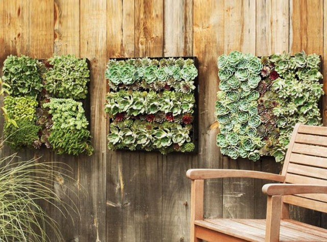 24 Best Indoor Living Wall Planters Ideas Images On