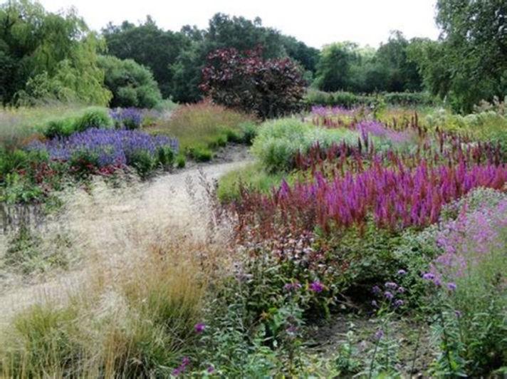 25 Gorgeous Piet Oudolf Garden Summer Ideas For