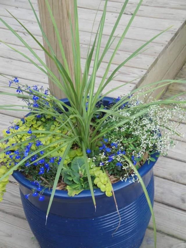 25 Small Herb Garden Design Ideas That Looks Amazing