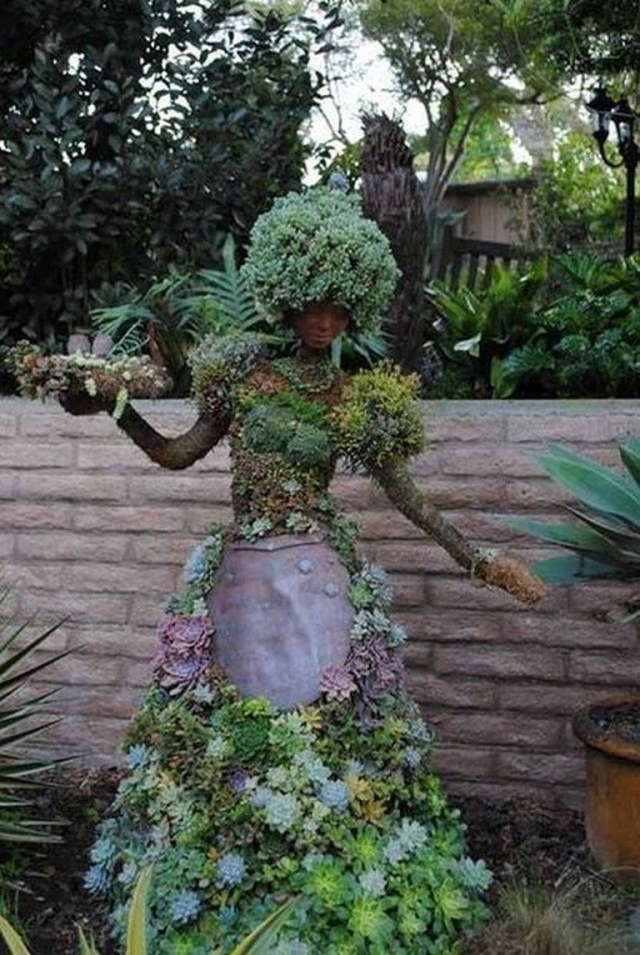 27 Marvelous Captivating Backyard Succulent Plants Garden