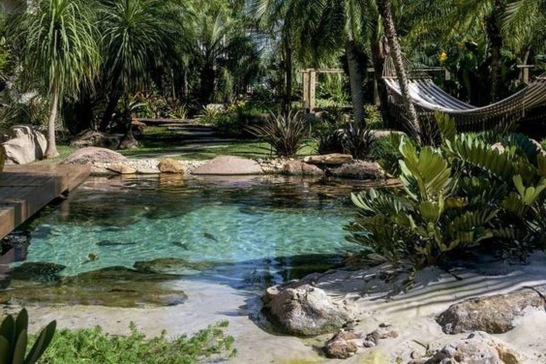 30 Gorgeous Backyard Swimming Ponds Ideas Pool