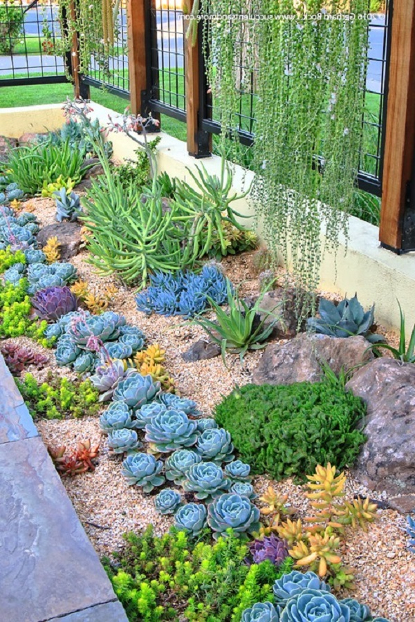 30 Gorgeous Low Maintenance Front Yard Ideas