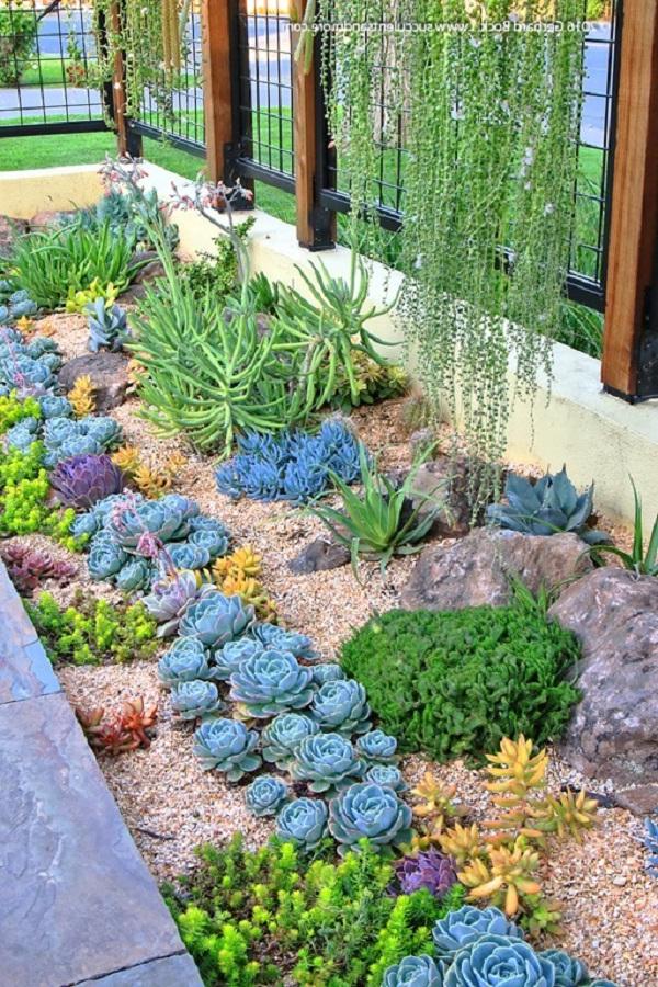 30 Gorgeous Low Maintenance Front Yard Ideas