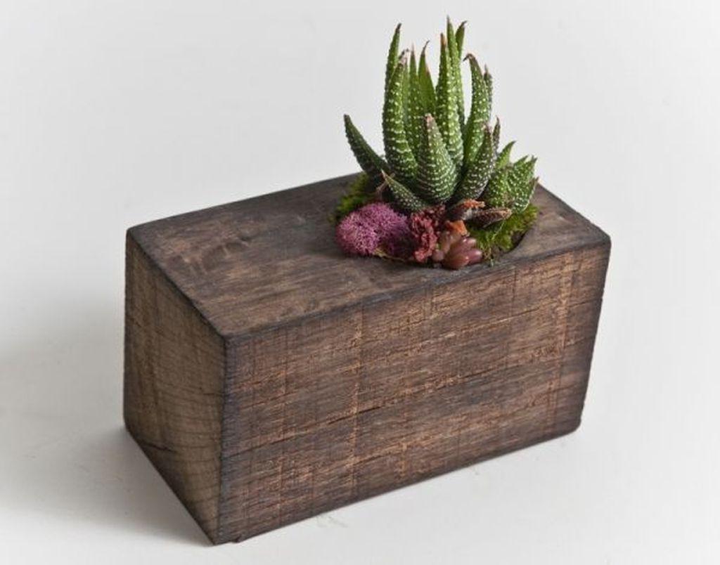 39 Captivating Wood Succulent Planter Ideas Of Unused Wood