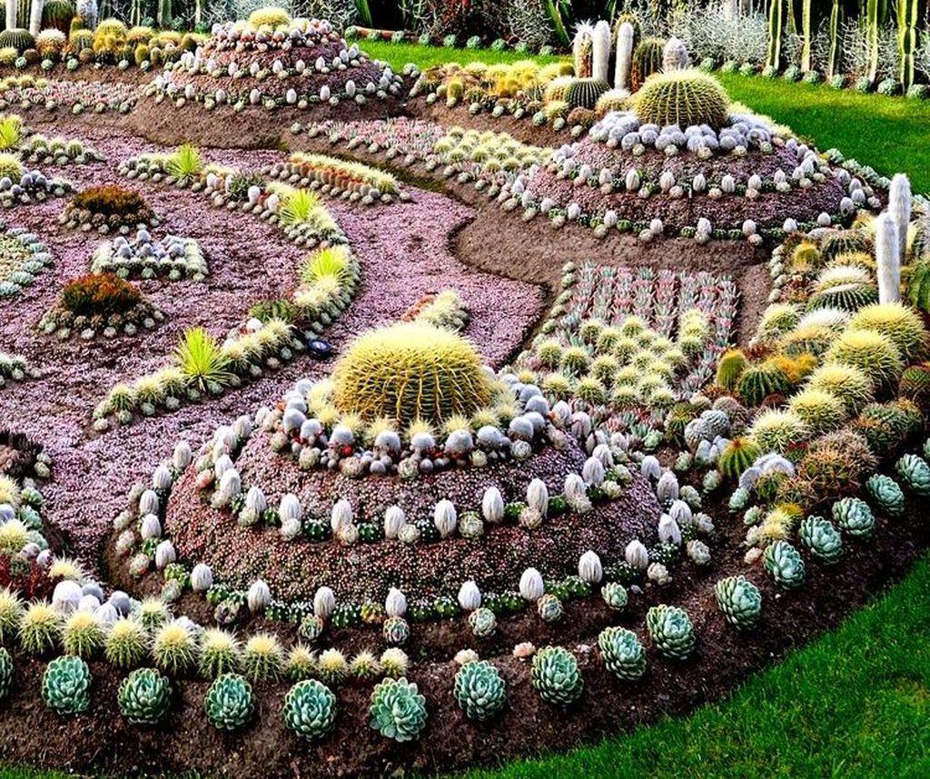 47 Beautiful Cactus Garden Ideas For Best Garden