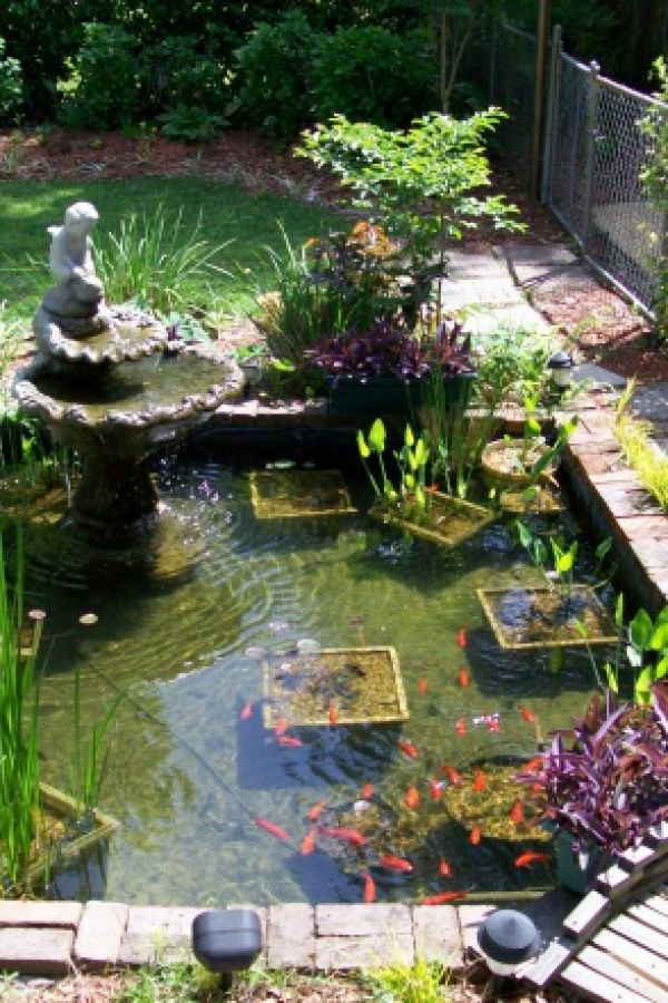50 Awesome Koi Pond Projects You Can Create To Complete