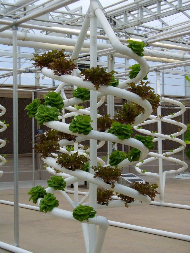 93 Best Hydroponic Systems Images On Pinterest