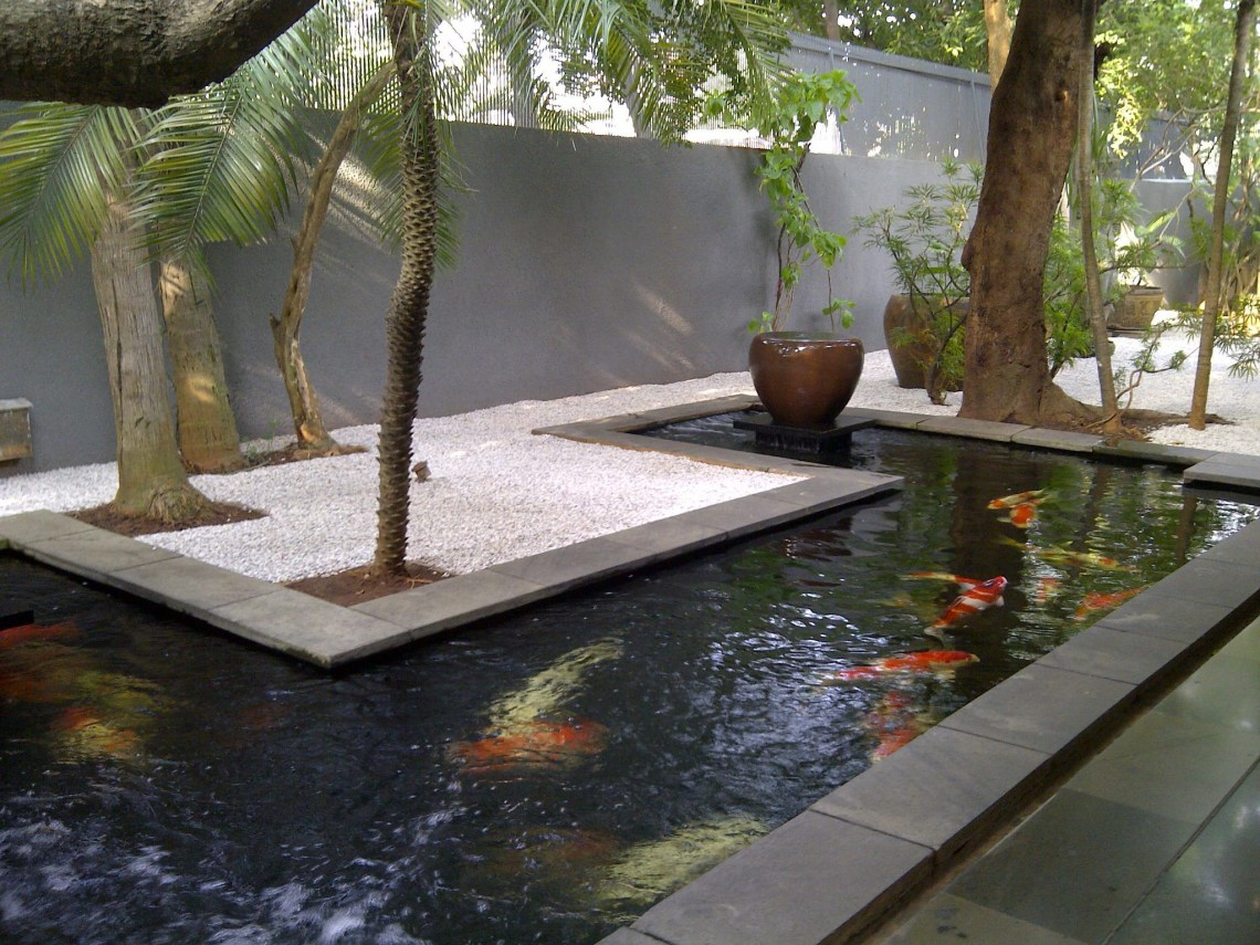 A Sleek Modern Koi Pond Garden Pond Design Indoor Pond