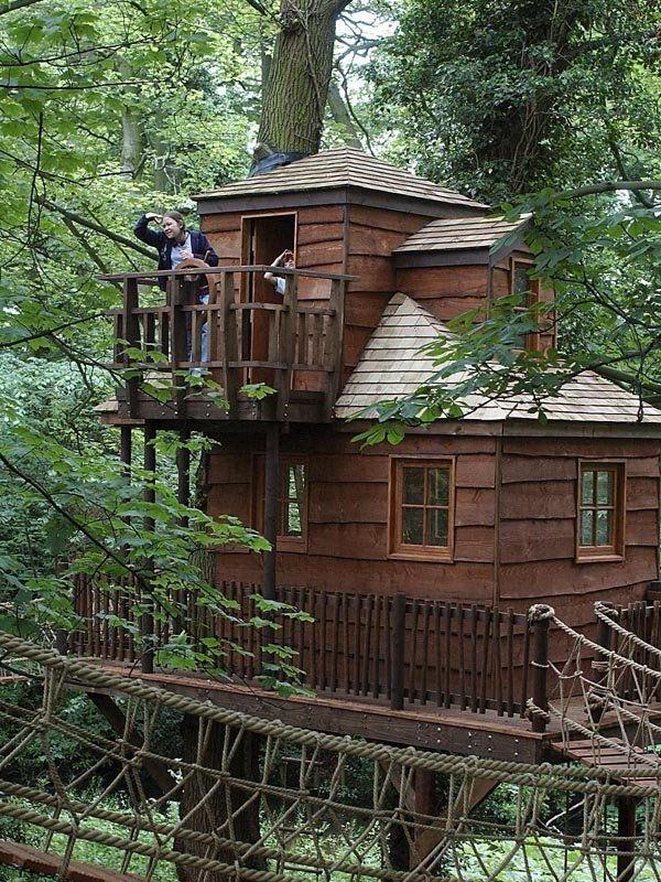 Awesome Tree House Treehouse Pinned Wwwmodlar