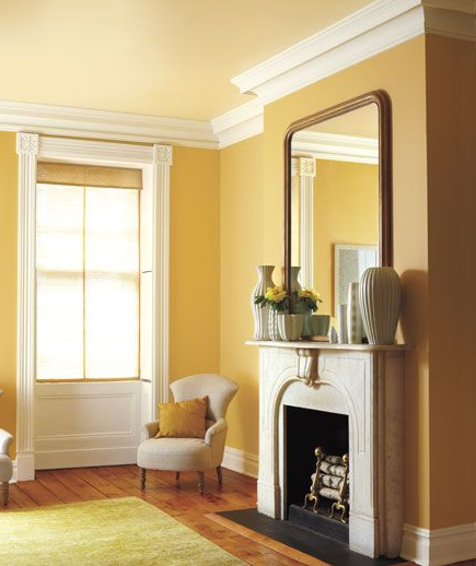 Color Combinations For Your Home Living Room Paint Room