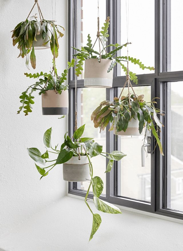 Create Coziness With Hbsch Aw2015 Houseofc Hanging