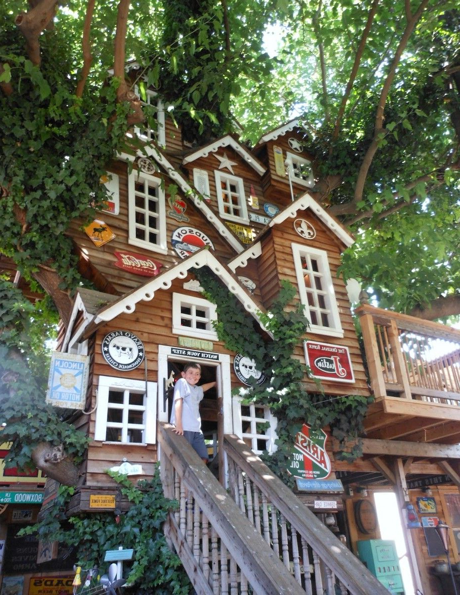 Cute Tree Houses Tree House Design Ideas For Kids And Adults Cute And Remarkable Tree
