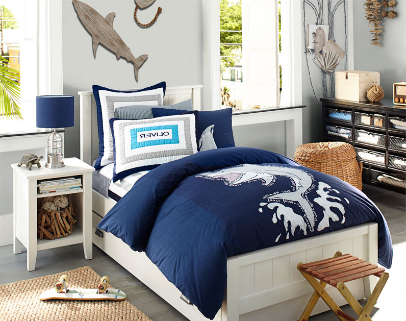 Decoration Ideas And Tips For A Boys Bedroom Master