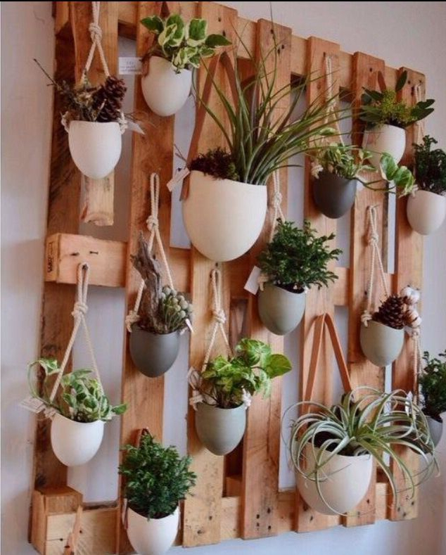 Diy Herb Wall Creative And Amazing Gardening Ideas That Go