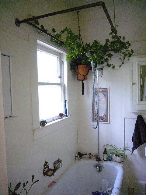 Du Lierre Dans La Salle De Bain In 2019 Bathroom Plants