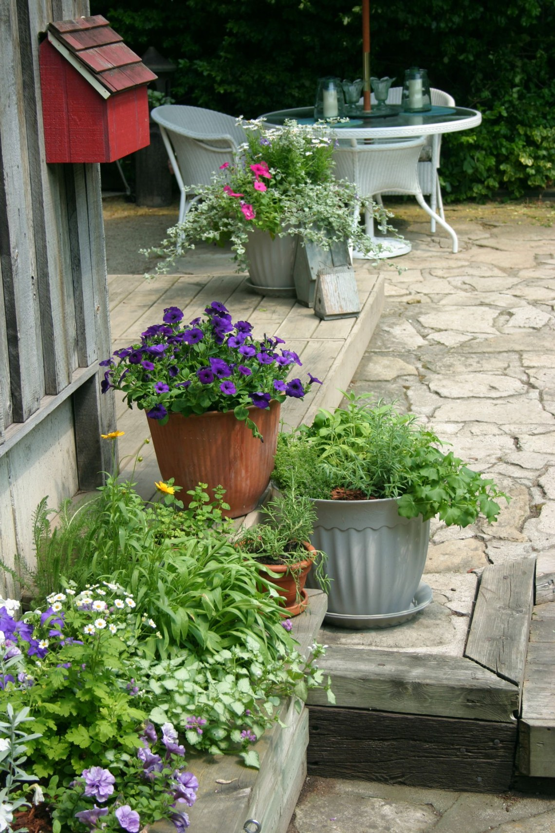 Fabulous And Innovative Ideas For Backyard Landscaping On A Budget Gardenerdy