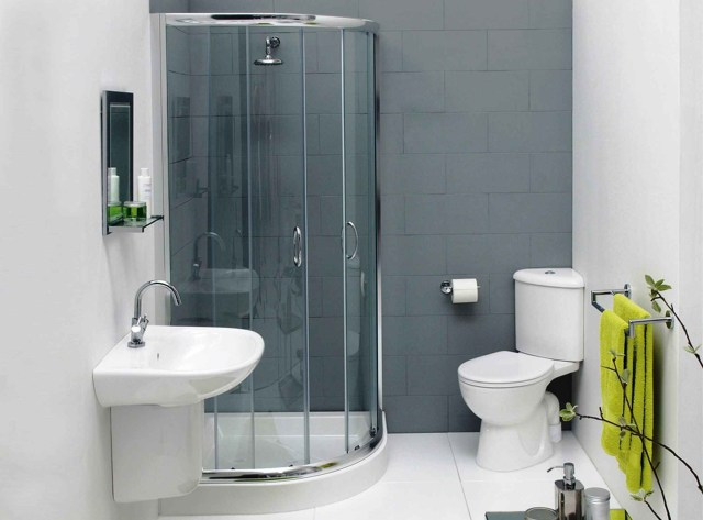 Fabulous Small Bathroom Designs With Shower Only For House
