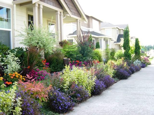 Garden Ideas Front Planting Yard Edible Gardens Vegetable