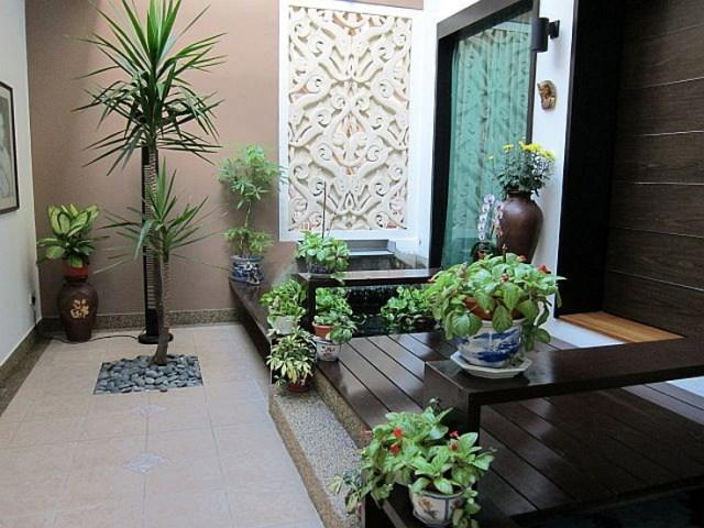 Harmonized Pots For Indoor Garden Designs Inspiration