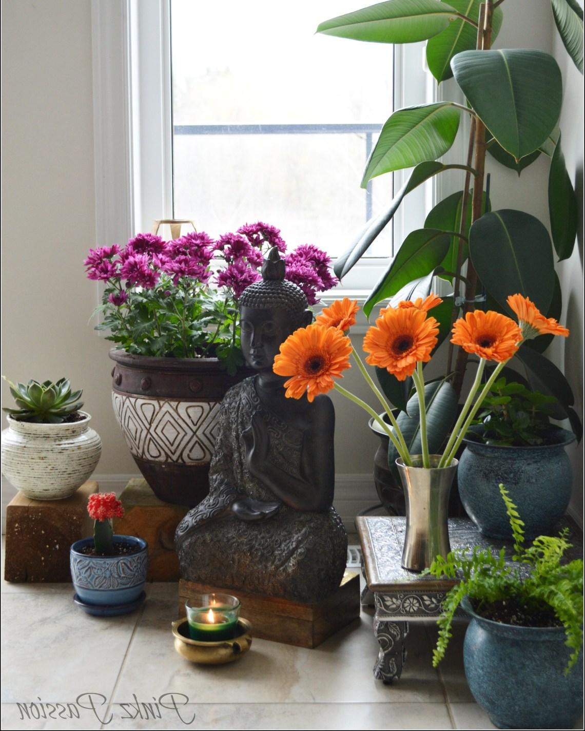 Indoor Garden Zen Place Buddha Corner Indoor Plants