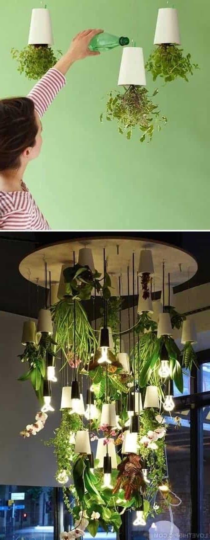 Indoor Gardening Great Ideas To Grow Food Inside Family