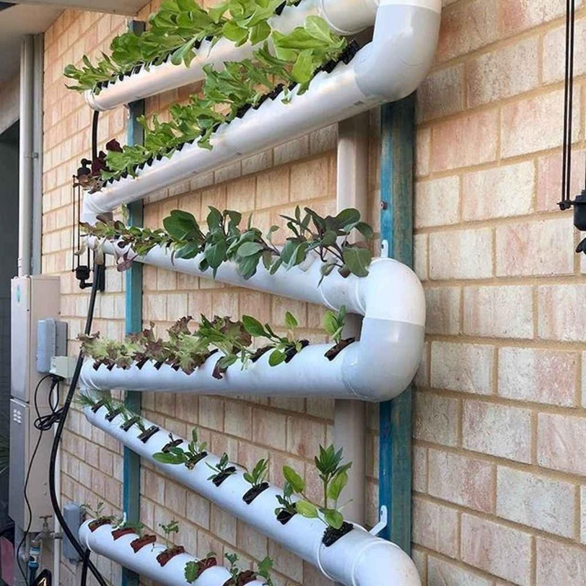 Indoor Gardening With Hydroponics Breakthrough With