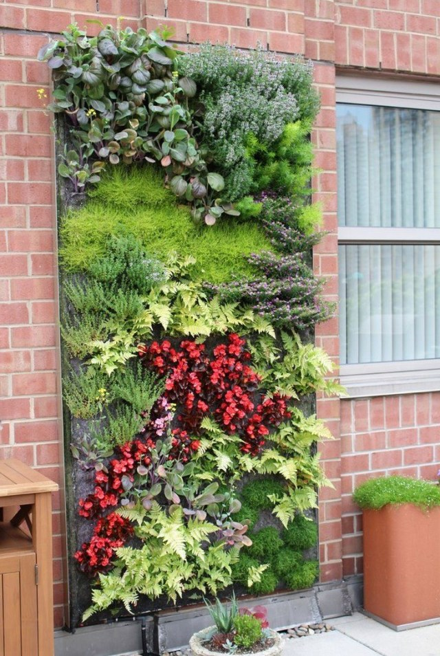 Modern Hydroponic Systems For The Home And Garden