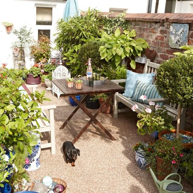 Narrow Garden Trees Design For Small Spaces Hgtv Bed Long