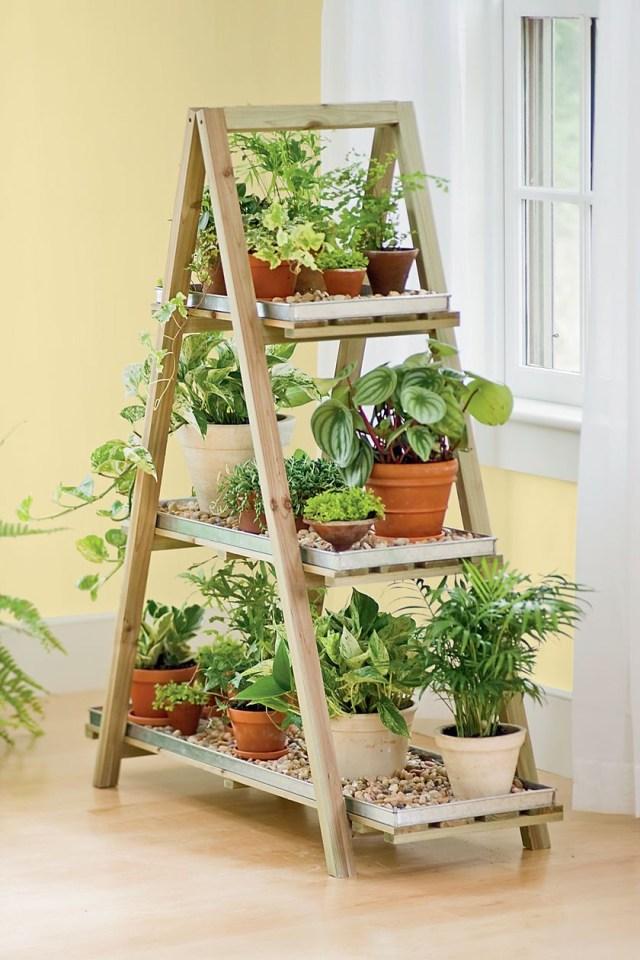 Old Ladders Repurposed As Home Decor Herbs Indoors Diy