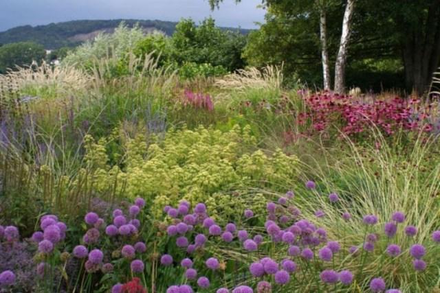 Piet Oudolf Garden Summer Ideas 230 Ogrody Ogrodnictwo