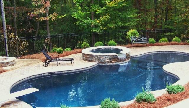 Simple Lagoon Style Pool Swimming Pool House Pool