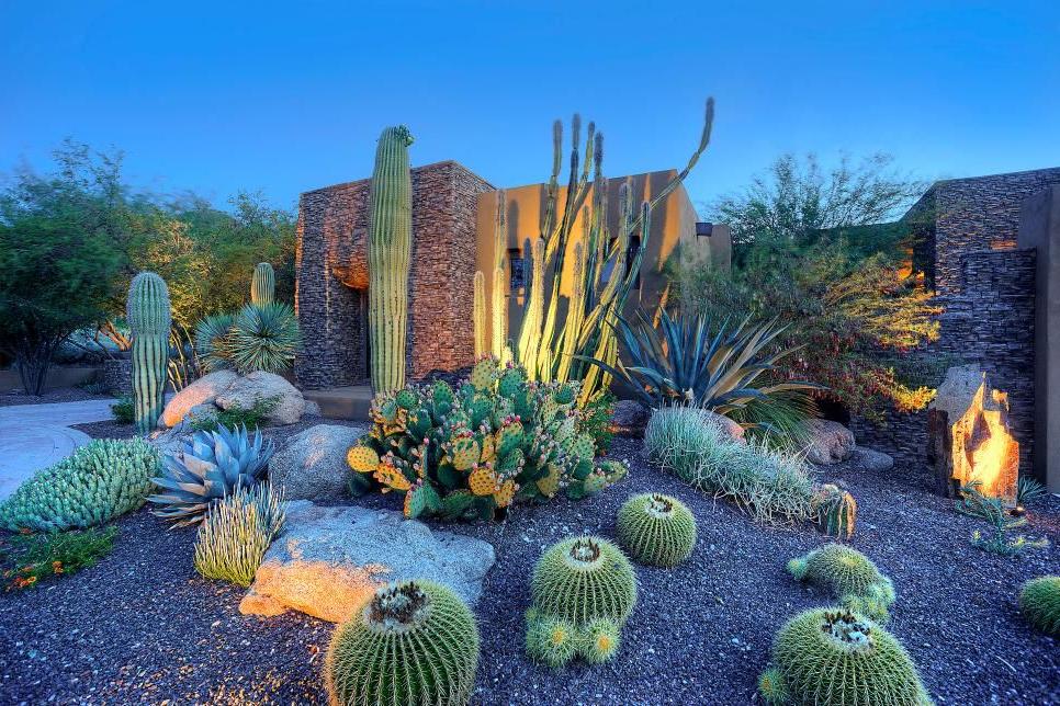 Southwestern Cactus Garden Succulent Landscaping
