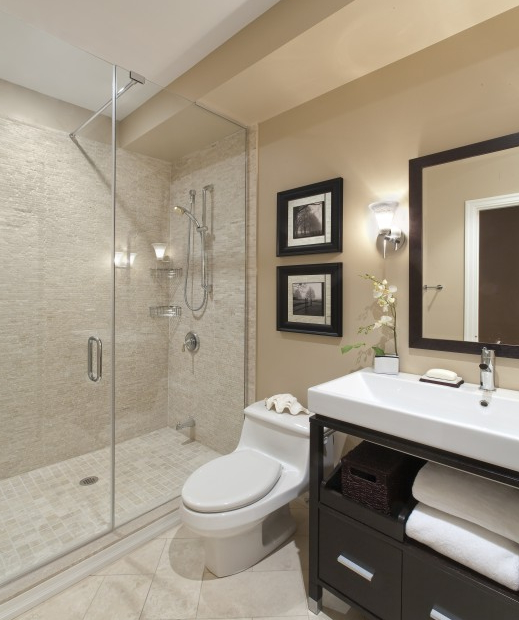 Spare Bathroom Transitional Bathroom Design Bathroom