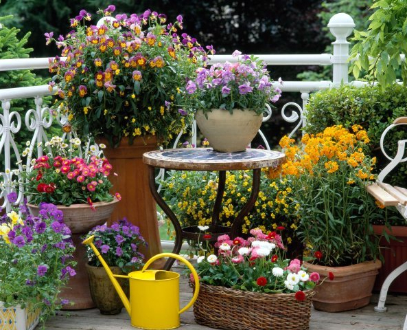 Spring Inspiration Patio Garden Designs For Apartment And