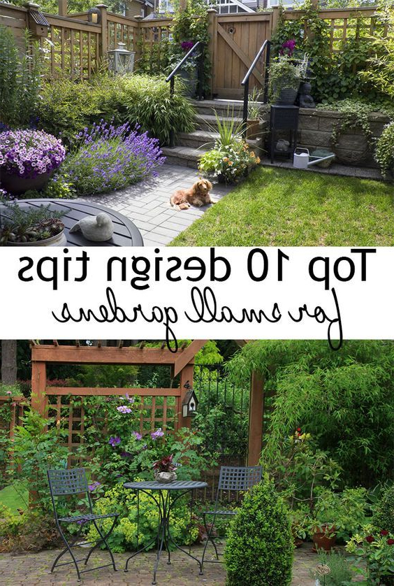 The 25 Best Small Gardens Ideas On Pinterest Tiny