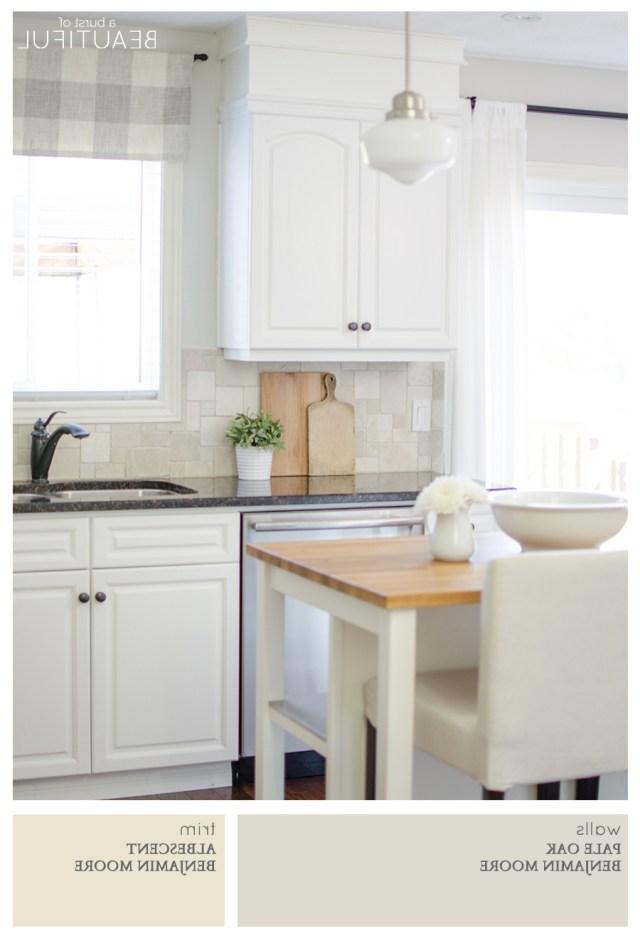 Warm Neutral Paint Colors For Kitchen New Best Whole