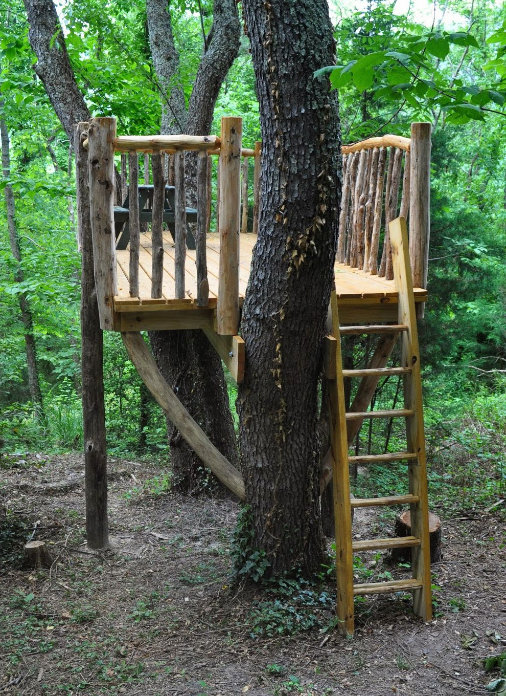 With Kid Safe Rustic Railings An Easy To Maneuver Ladder