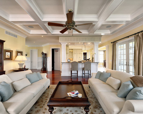 Yellow Living Room Home Design Ideas Pictures Remodel