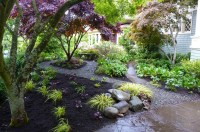 Hill Backyard Landscaping Ideas | Mystical Designs and Tags