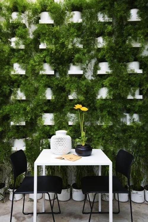 Green Walls 13 Best Ways To Bring The Outside Into Your Home HomeDesignBoard