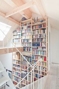Two-Story Home Library Inspiration | HomeDesignBoard