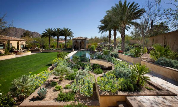 parched desert landscaping ideas