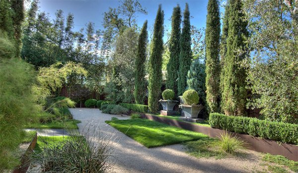 landscaping with trees in 15 outdoor