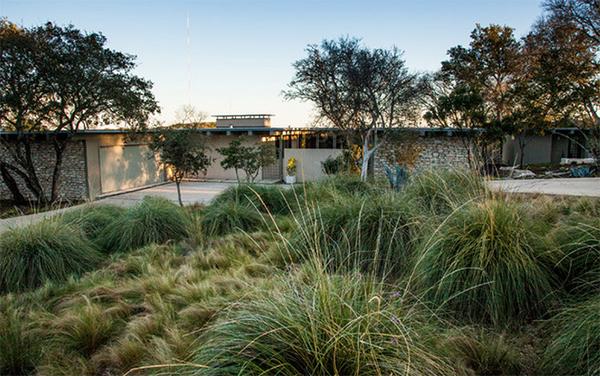 landscaping ideas grass