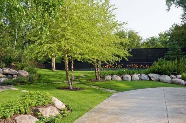tree shade landscaping ideas
