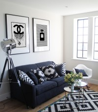 23 Modern Living Rooms Adorned with Black and White Area ...