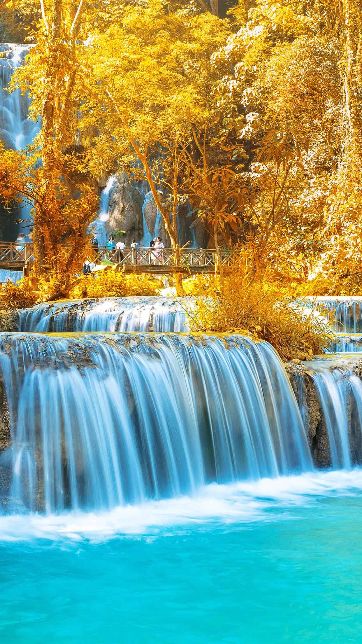 Best Iphone Wallpaper Website 15 Fall Iphone Xs Wallpapers Best Autumn Backgrounds