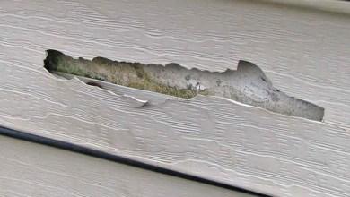 damaged vinyl siding